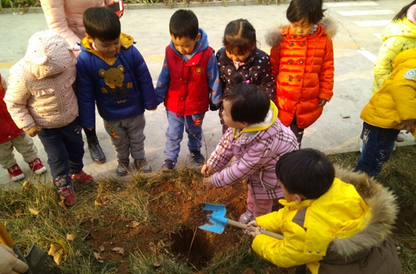 幼儿园植树节系列活动不但深受小朋友喜爱